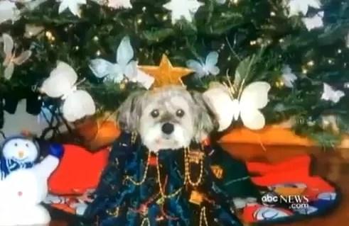 Mujer paga 50 mil dólares para clonar  su perro