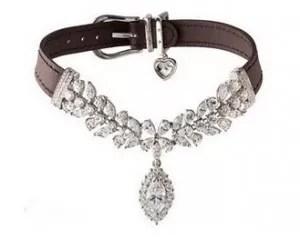 Investigan el robo de un collar de diamantes a un perro enterrado en París