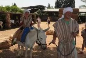 Israel equipa los primeros burros con WiFi del mundo