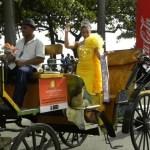 Cierre de Carnaval 2013 (21)