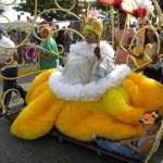 Cierre de Carnaval 2013 (35)