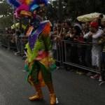 Cierre de Carnaval 2013 (61)