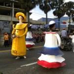 Cierre de Carnaval 2013 (75)
