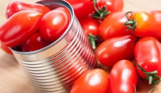 tomate lata