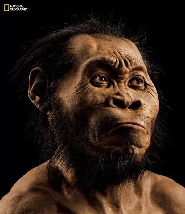 «Homo naledi»: ¿un nuevo miembro de la familia humana? Foto: Mark Thiessen