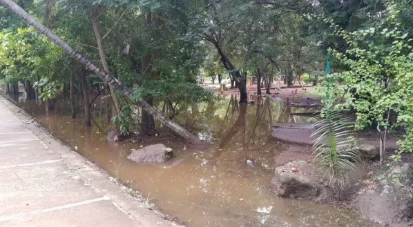 Mirador Sur
