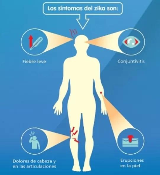 Virus del zika