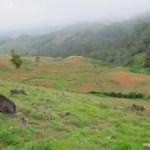 Medio Ambiente prohíbe de manera permanente actividades agrícolas en Valle Nuevo