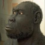 5 especies de humanos que han existido y que quizás no conocías