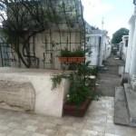 PLD denuncia sustraen pieza del mausoleo del profesor Juan Bosch