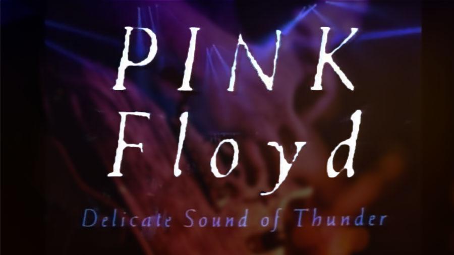 """Pink Floyd - Delicate Sound Of Thunder pour l'article """"Savoir gérer le regard des autres"""""""