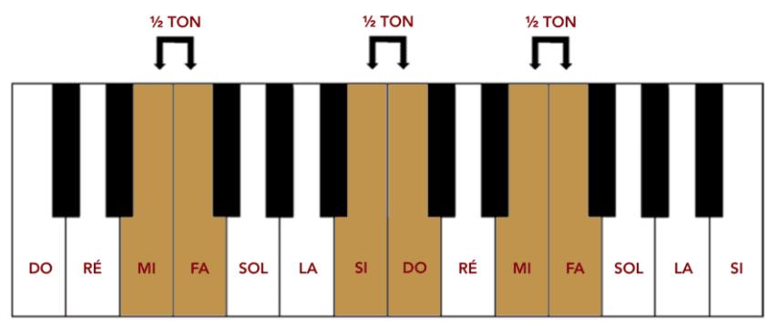 """Identification des demi-tons naturels sur un clavier pour l'article """"Le Demi-Ton En Musique"""""""