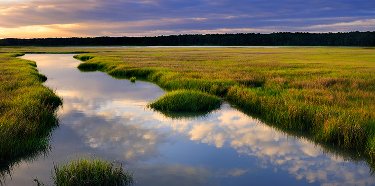 Fall Cape Cod Wallpaper Can Software Save Salt Marshes Ensia