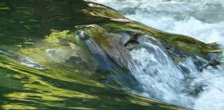 Air untuk bersuci