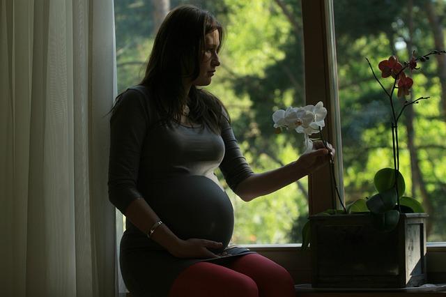 Penyebab Kematian Ibu Hamil