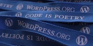 Plugin wordpress untuk pengelolaan iklan