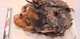 Mode Rambut Sambungan telah Ada Sejak 3000 Tahun Lampau - Egypt-Amarna-Hairstyles