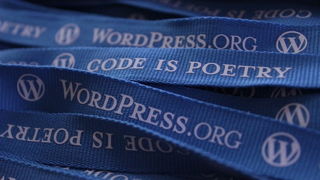 Instal Plugin dan Memasang widget wordpress