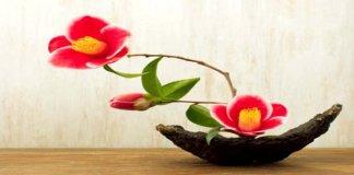 Inilah Ikebana: Seni Kuno Merangkai Bunga di Jepang