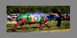Buffalo Bodypainting Competition
