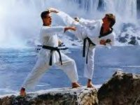 Taekwondotech2