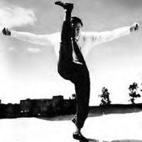White Crane Kung Fu