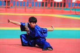 wu shu kung fu