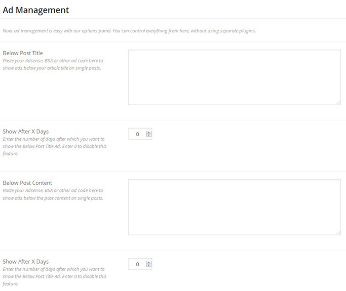 WordPress ecommerce theme ad management