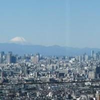 Mt.Fuji and TokyoSkyTree