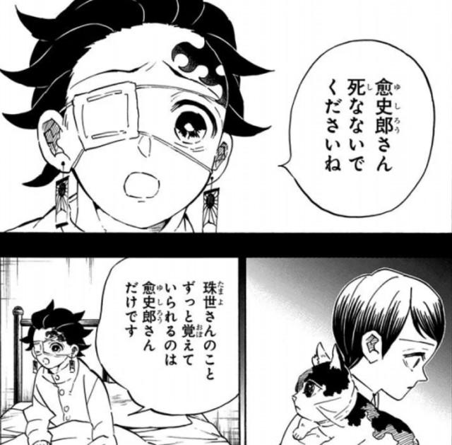 kimetsu-after-final-episode-6