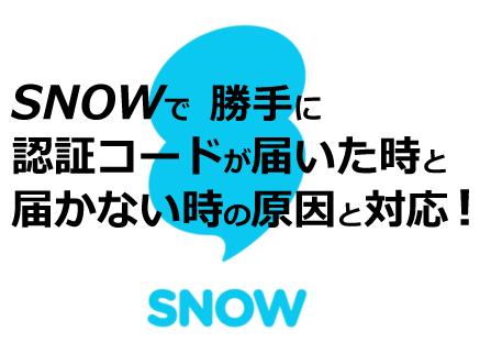 snow-ninshocode-1