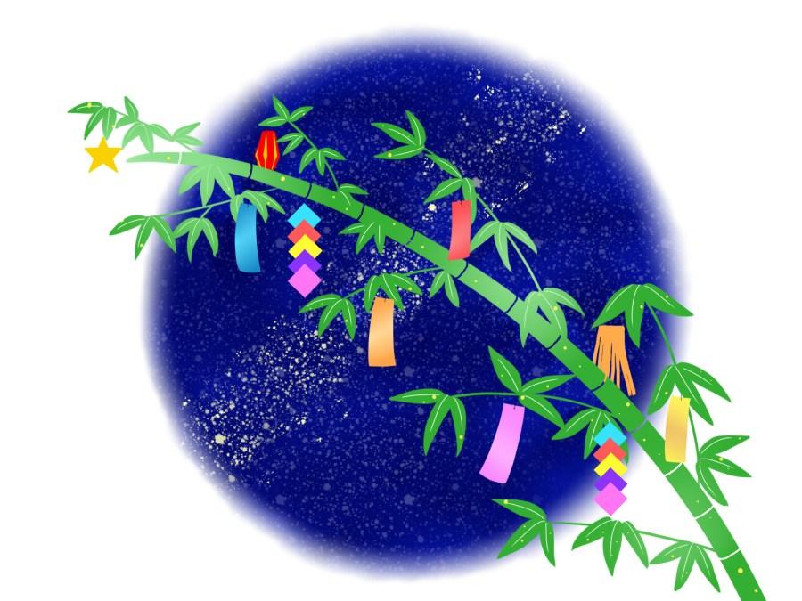 七夕の笹を購入できる場所は?処分・保存方法、由来もご紹介!