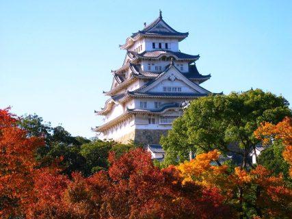 姫路城の紅葉の2017年の見ごろやライトアップはいつ?混雑具合や見所も