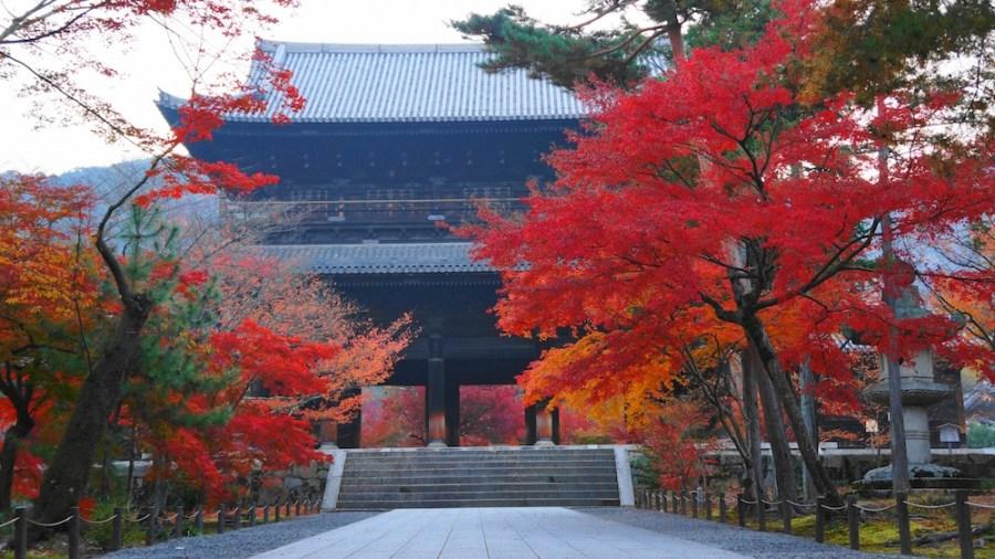 南禅寺の紅葉の2017年の見頃は?ライトアップやアクセス・見所も