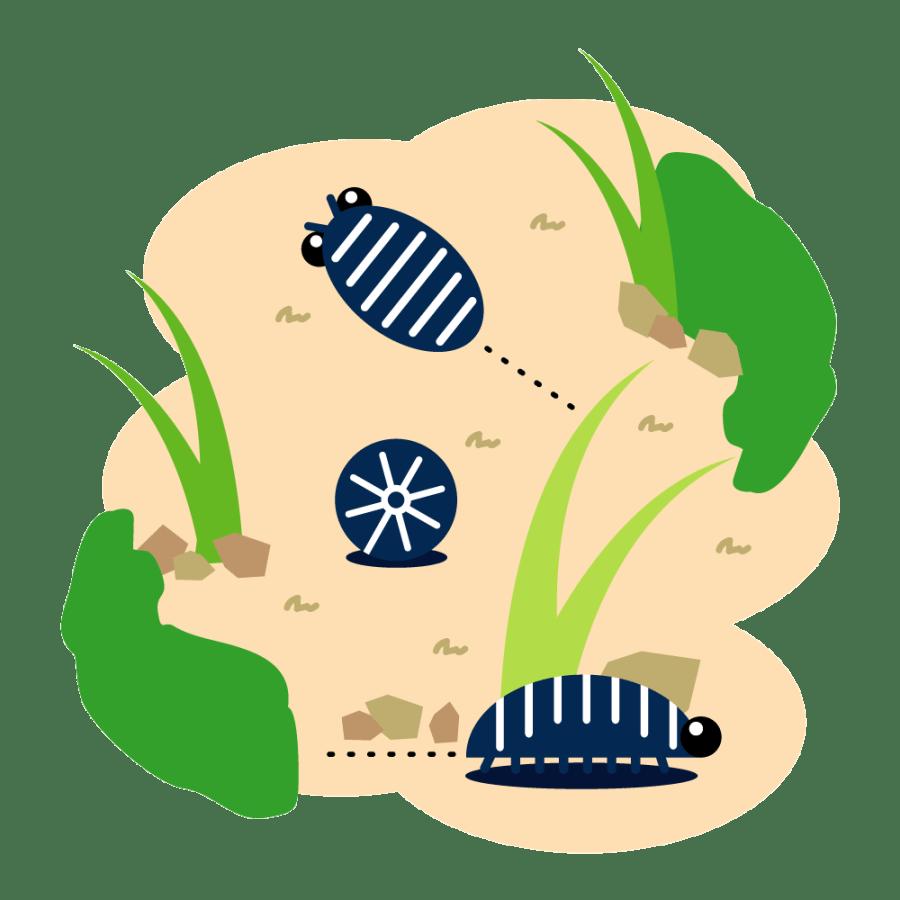 ダンゴムシの駆除・対策・予防法9選!大量発生の原因や害はある?
