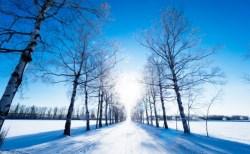寒冷の候の意味や読み方は?時期はいつ・いつまで使える、例文や結びも