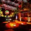 Tropical Discoが本格始動!今年第一弾コンピレーションCD発売、初野外パーティー、クラブナイト開催を続々と発表!