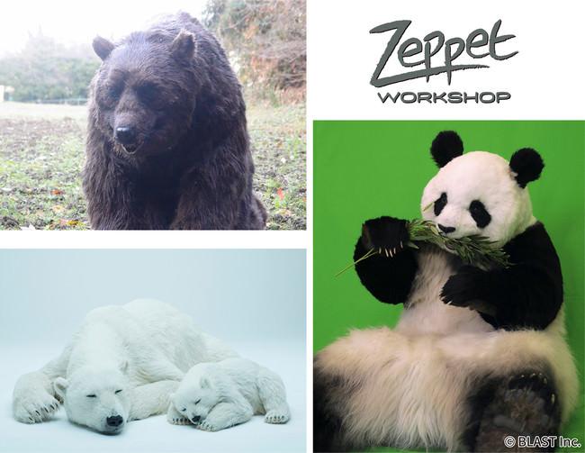 ヒグマ & パンダ & シロクマ 貸し出します!?ほぼ本物!リアルな動物の「着ぐるみ」と「美術造型品」レンタル受付開始!