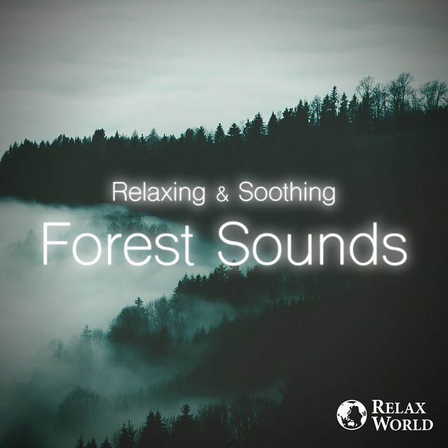 Relaxing & Soothing -Forest Sounds