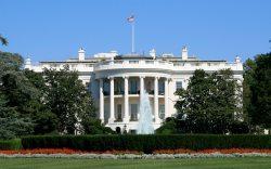 Perros Patrulla de la Casa Blanca