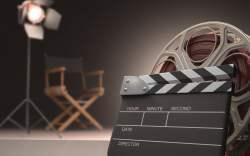 Los Cabos Film Fest 2014