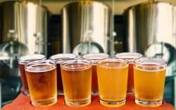 Festivales de cerveza artesanal en los Estados Unidos
