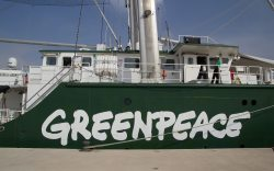 barco greenpeace de visita en Mazatlán
