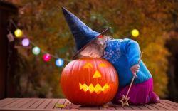 diversión familiar de halloween en las vegas