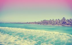 viajar a isla saona en república dominicana