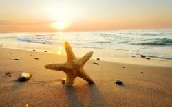 Principales razones para visitar Cancún en esta primavera compartidas por Krystal Cancún Timeshare