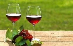 ¿Qué pasa si tomas una copa de vino después de ejercitarte?
