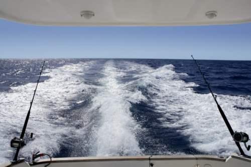 Los Cabos Razones para Visitarlo y Practicar La Pesca Deportiva. Yate Los Cabos