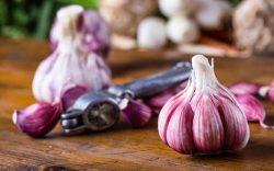 beneficios del ajo, ajo propiedades y usos, como consumir el ajo, ajo uso medicinal y preparación, usos del ajo medicina natural, ajo beneficios y contraindicaciones