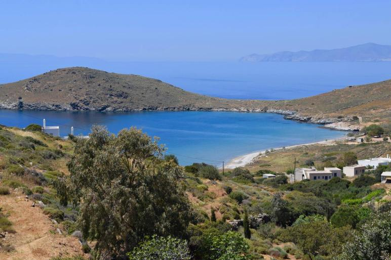 Oportunidad para vivir en isla griega a cambio de cuidar a 55 gatos 3